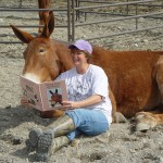 Studying up on Training Mules and Donkeys!