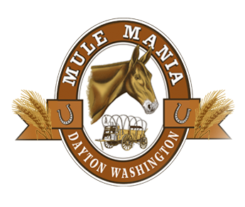Mule Mania Dayton - A Fun Family Event