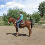 Flip – 5 yr old john mule, 15 hands – rides and packs